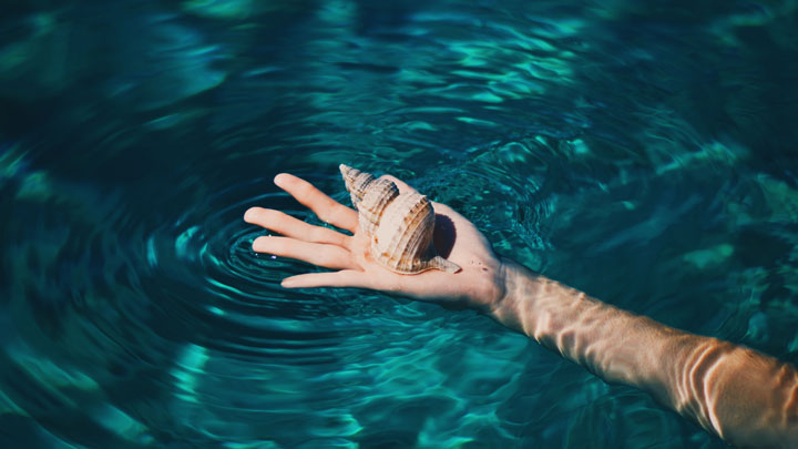 A woman's hand emerges from the water holding a sea shell. FInding connection and staying grounded while the energy around you flows is the essence of feng shui