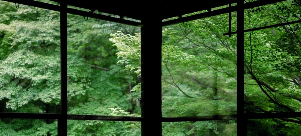 Japanese bath house looking out to forest with beams creating negative space